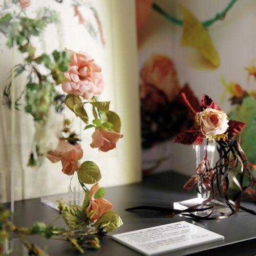 Fleurs © Studio Tchiz